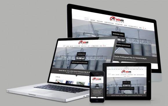 Ekinata Group Web Tasarımı