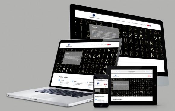 Polimeks Holding Web Tasarımı